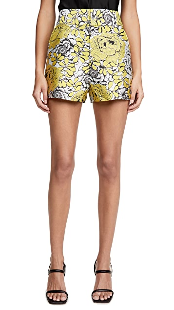 alice + olivia Cady High Waist Clean WB Shorts