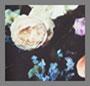 混合花卉印花
