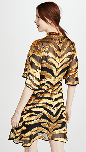 Adam Lippes Mini Dress In Burnout Velvet