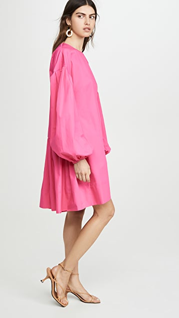 Adam Lippes Shirred Back Dress In Cotton Poplin