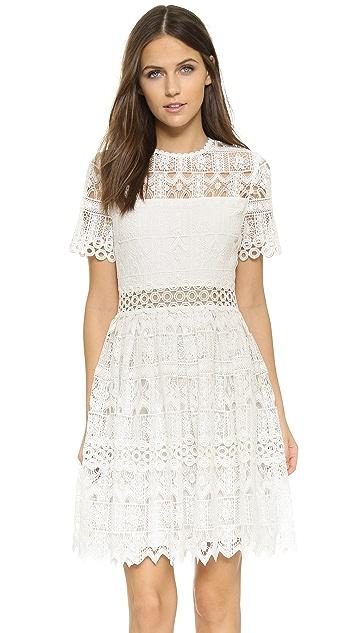 Alexis Lula Dress