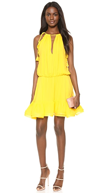 Alexis Monic Dress
