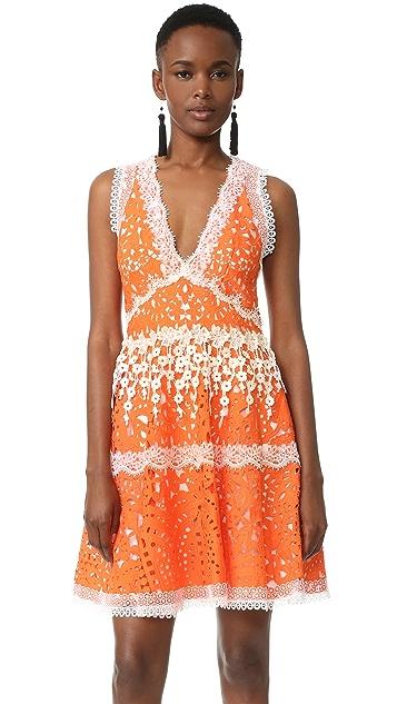 Alexis Bridget Dress