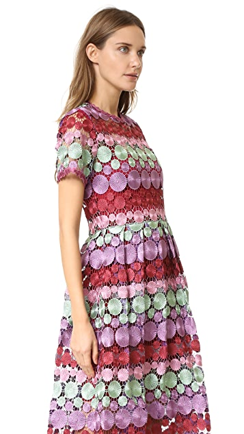 Alexis Daniella Dress