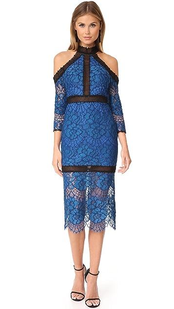 Alexis Marlowe Dress