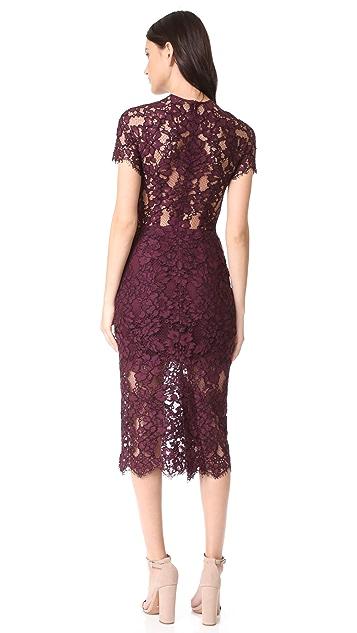 Alexis Leona Lace Dress