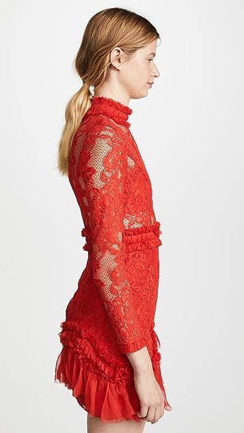 Alexis Wilhemina Dress