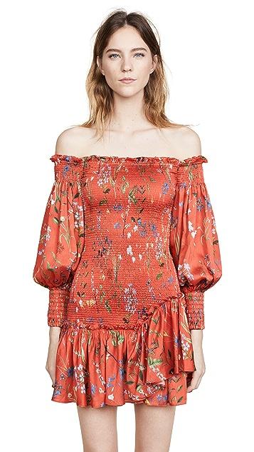 Alexis Gemina Dress