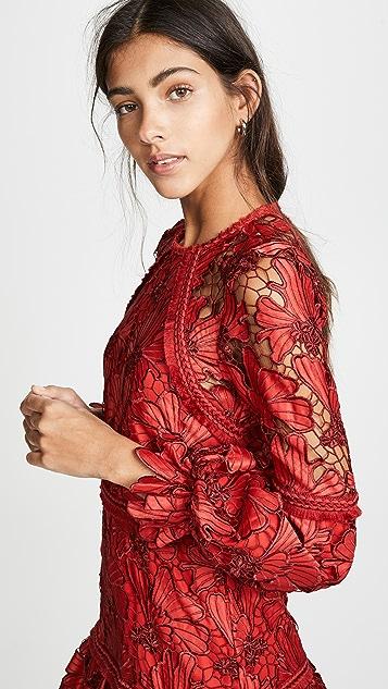 Alexis Fransisca Dress