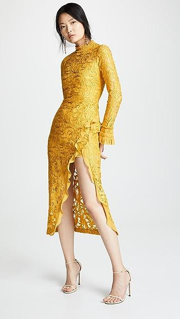 5e5aa15aa3d Alexis Fala Dress ...