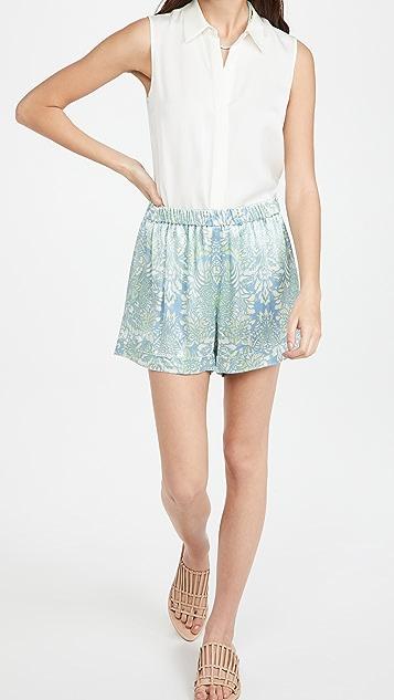 Alexis Darra 短裤
