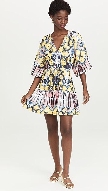 Alexis Kasi Dress