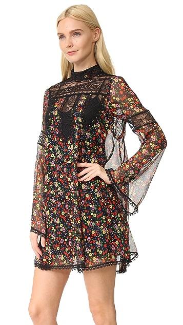 Anna Sui Pansy Print Crinkle Chiffon Dress