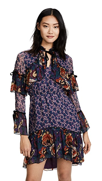 Anna Sui Birds & Roses Dress
