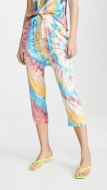 AqC Hilton Pants