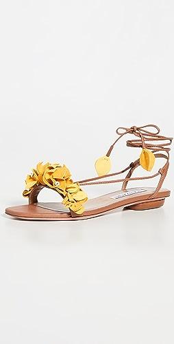 Aquazzura - Bougainvillea Laced Flat Sandals