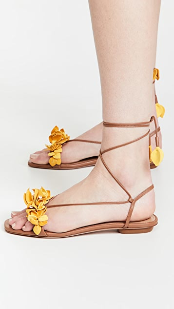 Aquazzura Bougainvillea Laced Flat Sandals