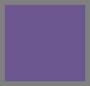 银色/紫色
