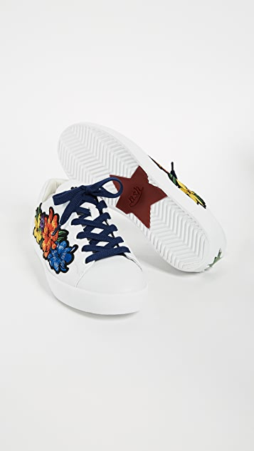 Ash Neo Sneakers