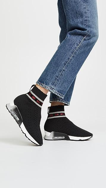 Ash Link Sneakers