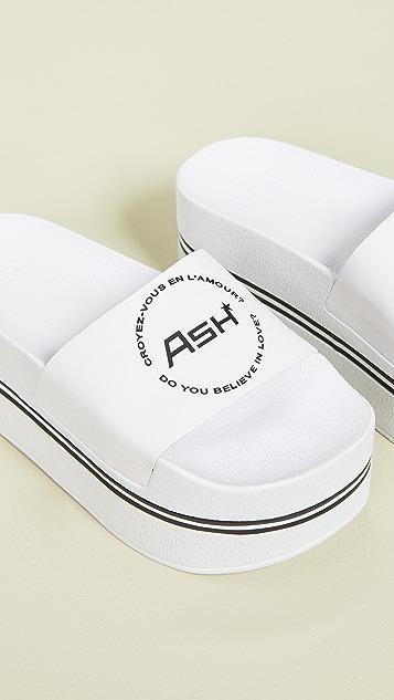 Ash Spot Bis 便鞋