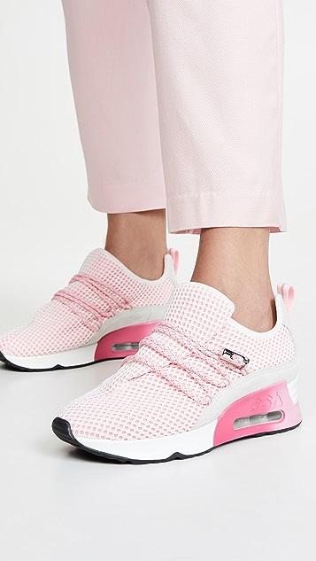 Ash Lenny Trainer 运动鞋