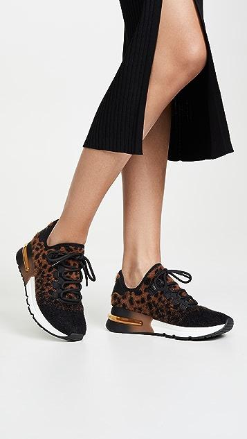 Ash Krush Sneakers