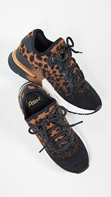 Ash Krush Sneakers