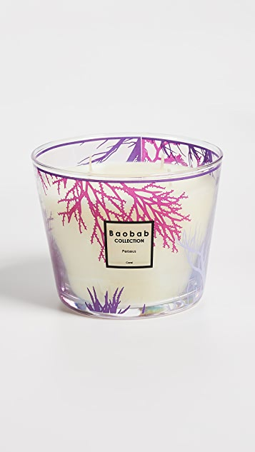 Baobab Collection Coral Max 10 Candle