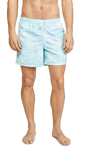 Bather Hawaiian Palms Trunks