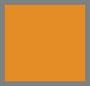Bright Orange Check