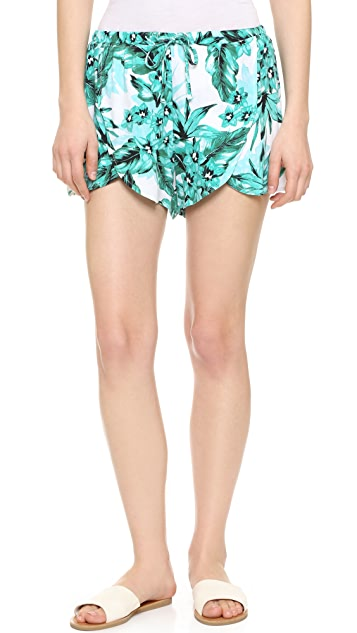 BB Dakota Jack by BB Dakota Langford Printed Shorts