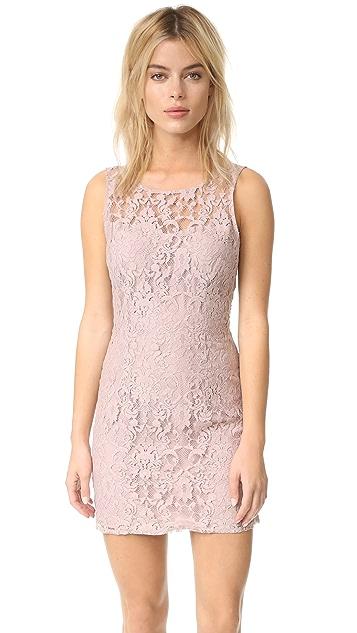 BB Dakota Thessaly Sleeveless Lace Dress
