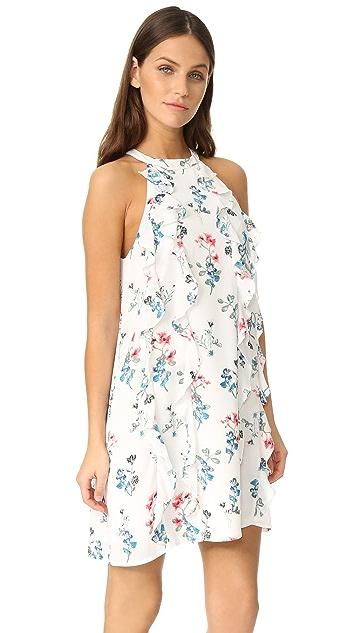 BB Dakota Elly Ruffle Column Dress
