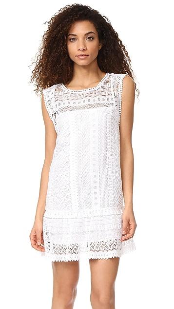 BB Dakota Milo Crochet Lace Dress