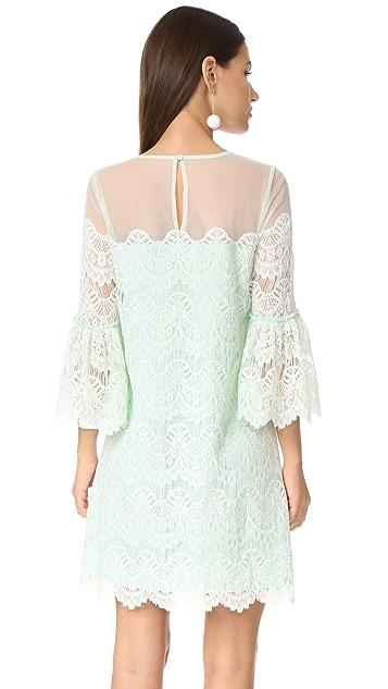 BB Dakota RSVP Adelina Dress