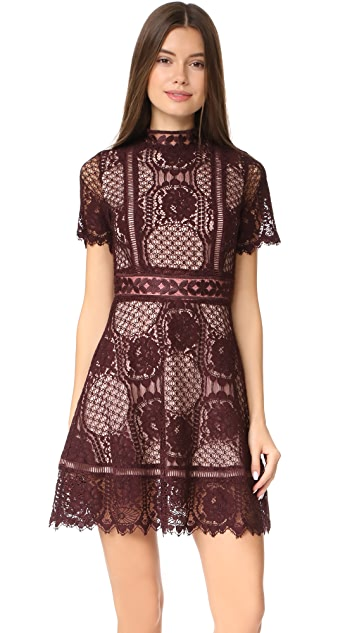 BB Dakota Aria Lace Short Sleeve Dress
