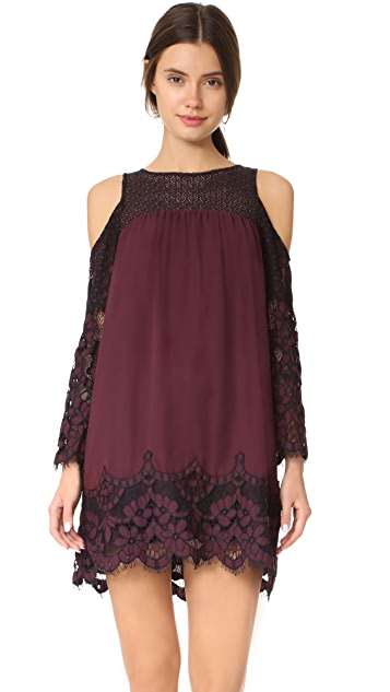 BB Dakota Jacky Two Tone Lace Dress