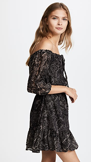 BB Dakota Westerly Burnout Velvet  Dress