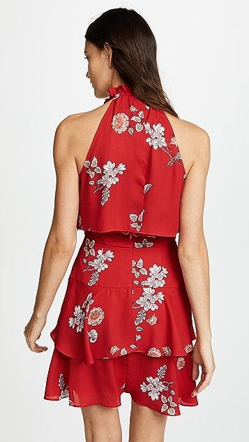 BB Dakota Cadence Floral Dress