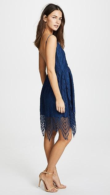 BB Dakota Lace Fit and Flare Dress