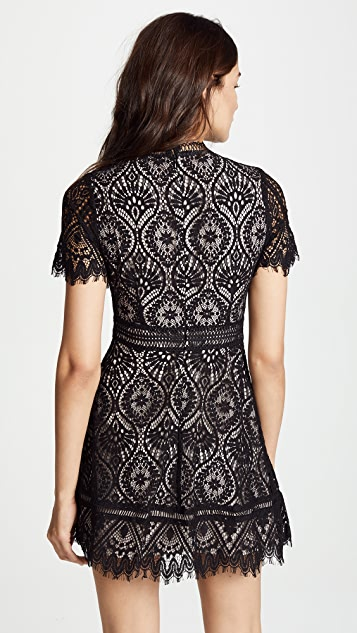 BB Dakota On The List Dress