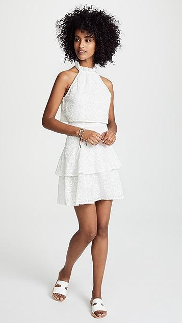 BB Dakota Circle Dot Dress