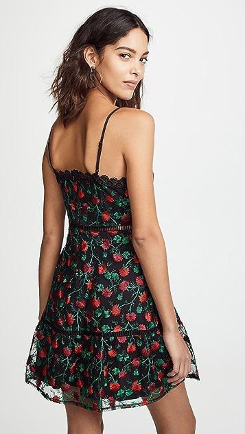 BB Dakota Jack By BB Dakota Nothin To Mesh With Dress
