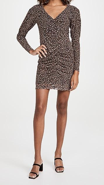 BB Dakota Animal Attitude Leopard Mesh Dress