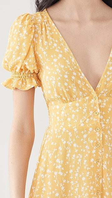 BB Dakota Floral Tradition 连衣裙