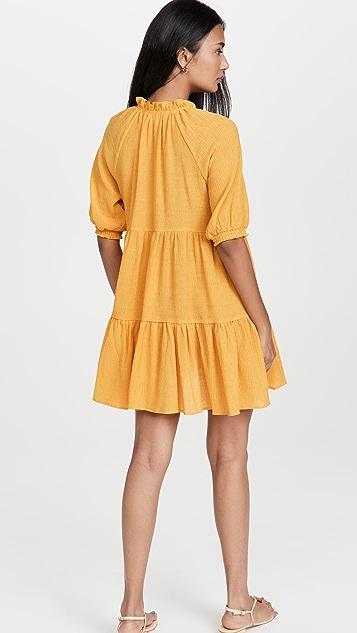BB Dakota Iced Tea Dress
