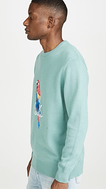 Barney Cools Parrot Crew Neck Sweater