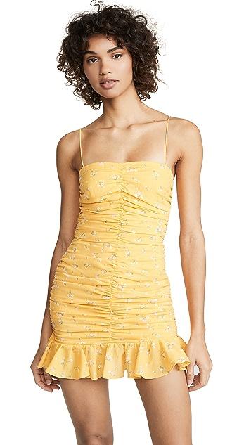 Bec & Bridge Marigolds Fields Dress