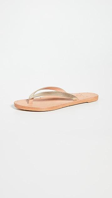 甜菜紫 Seabird 夹趾凉鞋